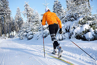 skilanglauf, langlauf, loipe, winter, schnee