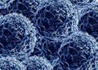 Mit Nanopartikeln gegen den Krebs