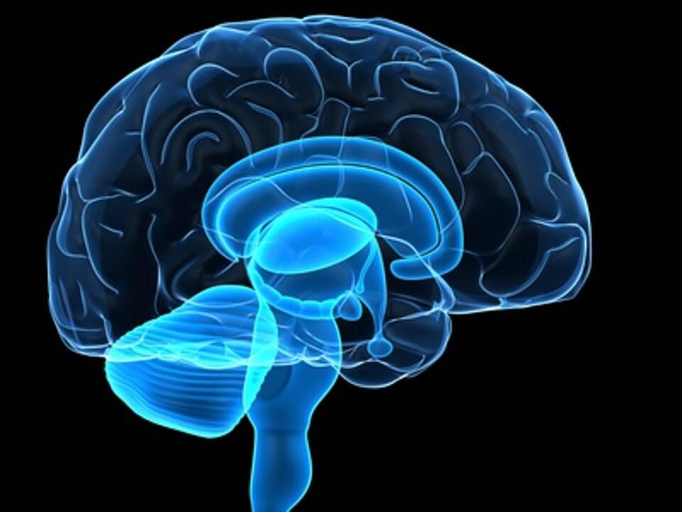 Therapie bei Anti-NMDA-Rezeptor-Enzephalitis