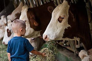Bauernhofbakterien