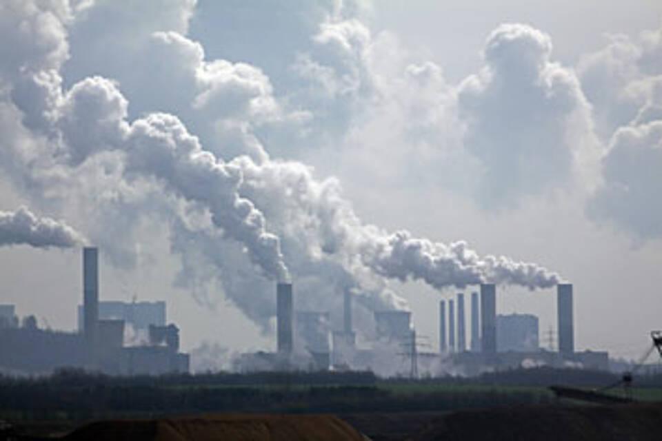 Greenpeace warnt vor Gesundheitsgefahren durch Quecksilber