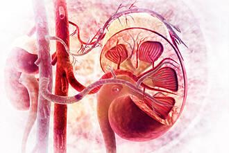 SGLT2-Hemmer, chronische Nierenkrankheit, Dialyse