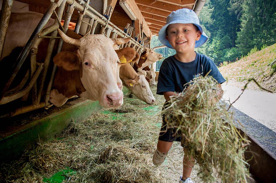 Bauernhof, Kinder, Asthma