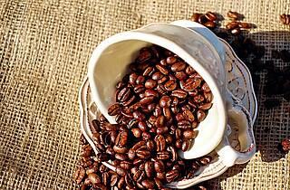 Kaffee ist besser als sein Ruf: Das belegen große Ernährungsstudien