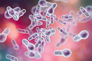 Clostridium difficile, Krankenhauskeim