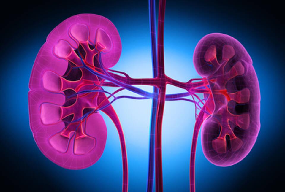 Niereninsuffizienz, Nierenschwäche, Folgeerkrankungen