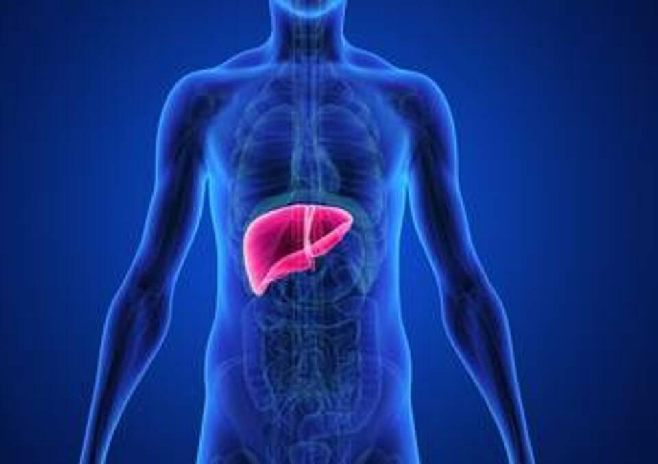 Hepatitis, Leberentzündung