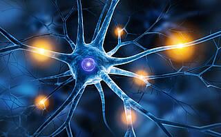 Nervenfasern reparieren