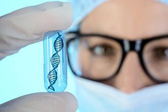 Bei der T-Zellrezeptor-Gentherapie werden T-Zellen gegen bestimmte Oberflächenmerkmale der Krebszellen scharf gemacht.