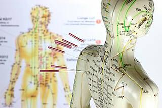 Forscher sind dem Rheuma-Gedächtnis auf der Spur: Die krankmachenden Zellen verstecken sich vermutlich in speziellen Nischen