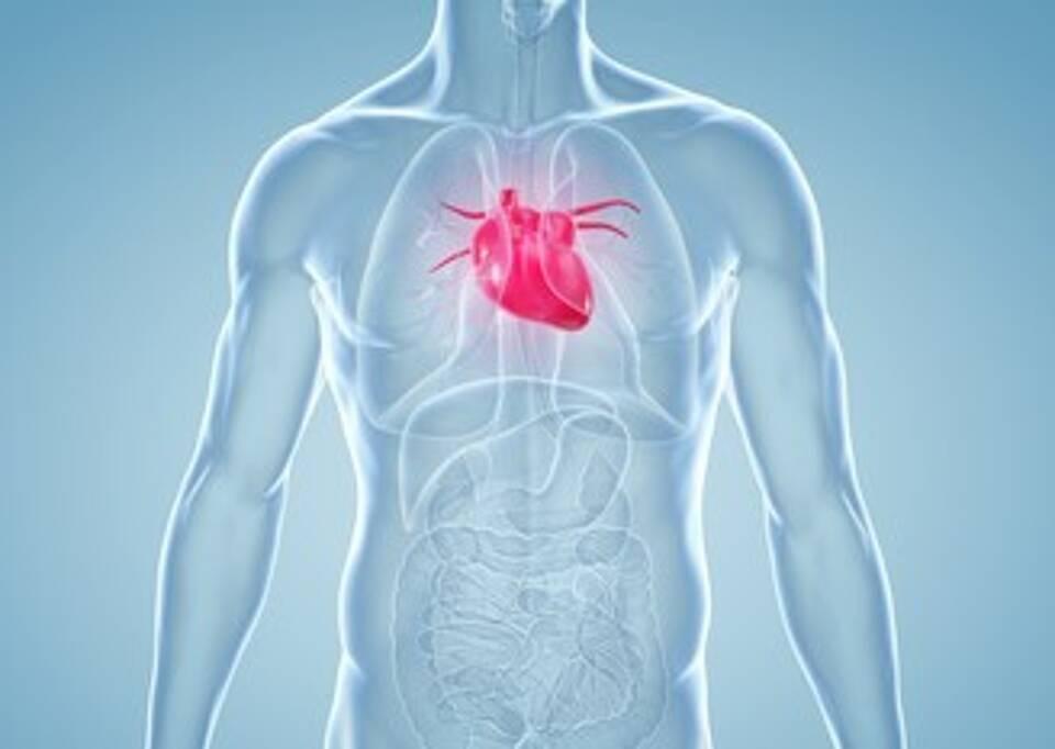 Herzmuskelentzündung behandeln