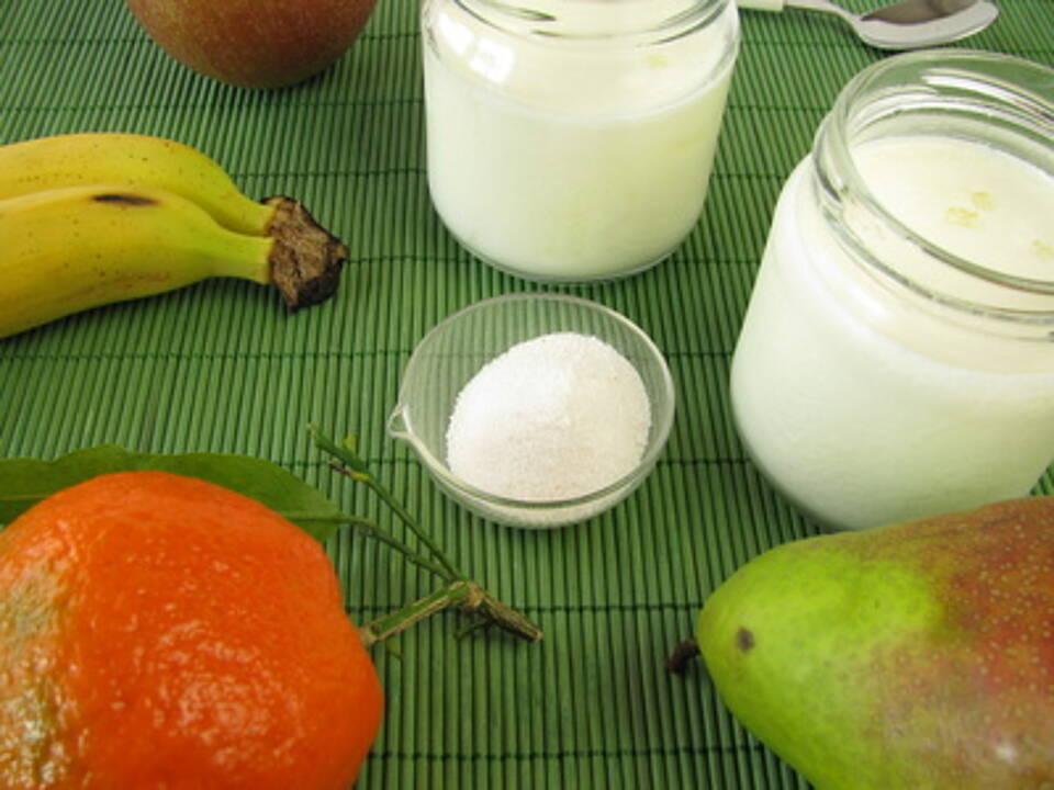 Probiotika, Depressionen, Milchsäure