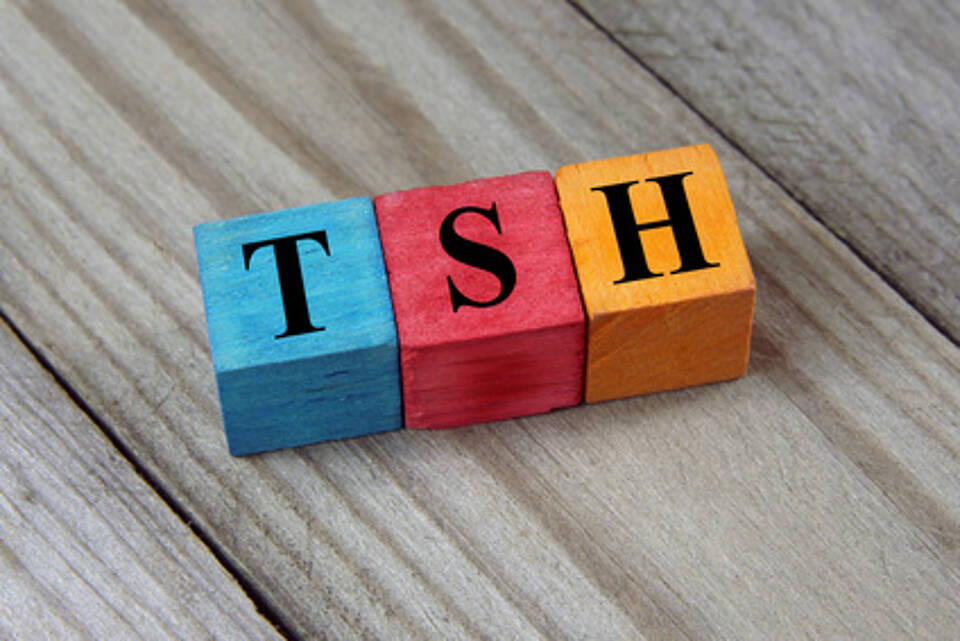 TSH stimuliert die Schilddrüse