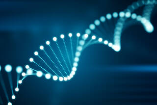 Traumata, Epigenetik, DNA