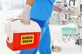 Transplantation, Regeln zu Vergabe von Spenderorganen