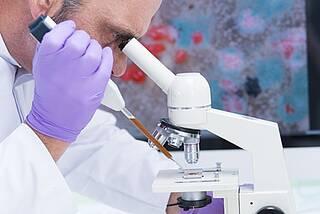 Erreger unterm Mikroskop