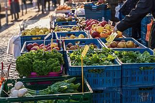Obst- und Gemüsekisten auf einem Wochenmarkt.