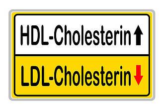 LDL, HDL, Cholesterinwerte, Tag des Cholesterins