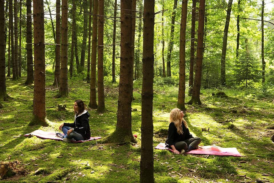Fichtenwald mit Moosboden: Zwei Frauen beim Waldbaden auf Yogamatten