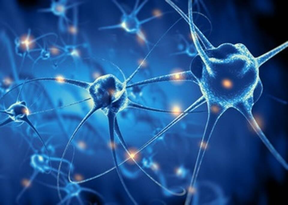 SSRI, Schlaganfall, Neurogenese