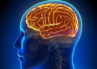 Blut-Hirn-Schranke durchbrochen