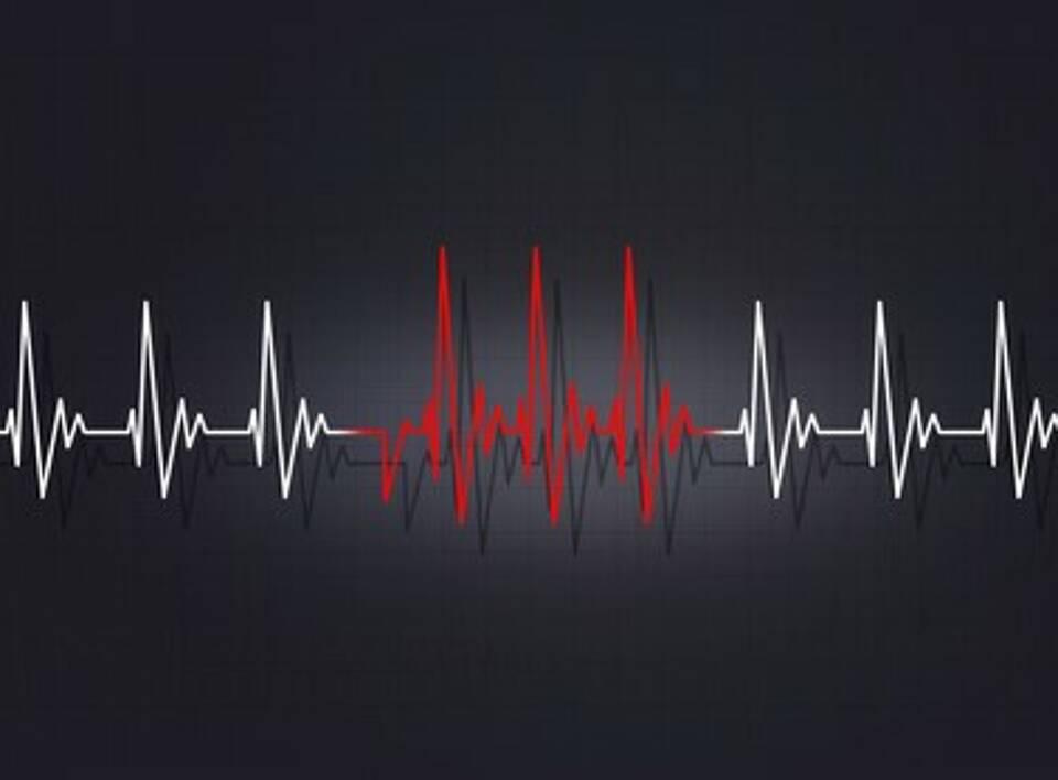 Herzerkrankungen, Herzrhythsmusstörungen, Telemontoring, Telemedizin, Kardiologie