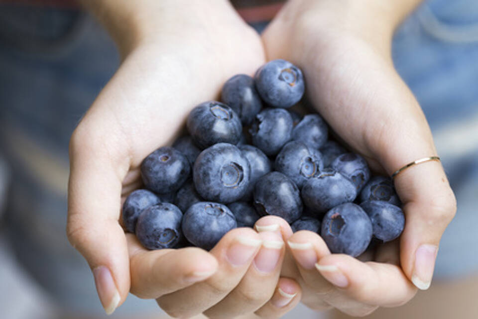 Blaubeeren, Flavonoide, Grippeschutz