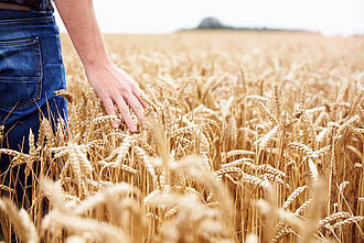 Weizenunverträglichkeit