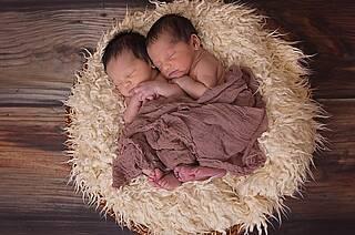 Charaktereigenschaften werden laut einer Zwillingsstudie vererbt und nicht erworben