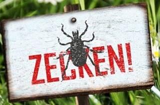 Borreliose-Risiko nach Zeckenbiss