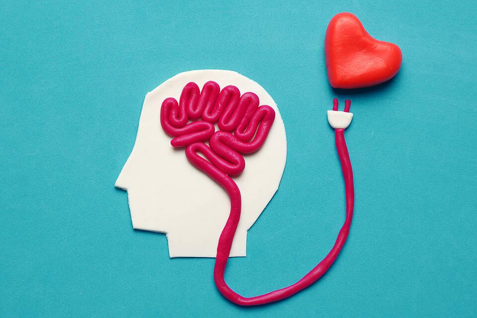 Knet-Visualisierung: Herz-Gehirn mit Stromleitung und Stecker verbunden