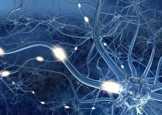 Ursachen für Multiple Sklerose