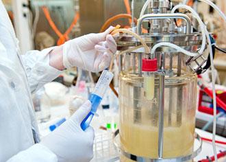 Impfung mit dendritischen Zellen: Patienten mit Kopf-Hals-Tumoren erfolgreich behandelt
