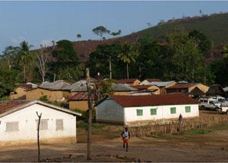 Rätsel um Ursprung der Ebola-Epidemie gelöst