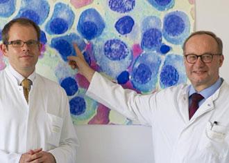 Neuer Antikörper verspricht längeres Überleben bei multiplem Myelom