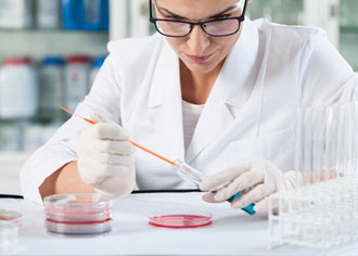 Wissenschaftler hoffen, die unheilbare Muskeldystrophie mit einem Proteasom-Inhibitor zu stoppen
