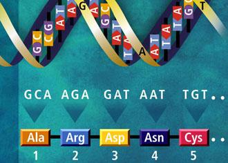 Krebsgenomprojekt: Big Data für eine bessere und präzisere Medizin