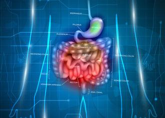 Wissenschaftler haben eine Ursache für chronisch-entzündliche Darmerkrankungen gefunden
